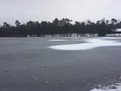 Black Park Lake frozen Winter 2013 Wallpaper