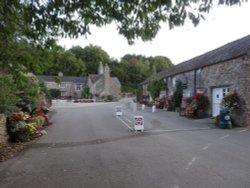 Shop and reception campsite
