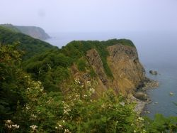Coastal cliffs near Clovelly