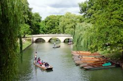 Punting on the Cam in Cambridge