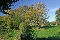 Stour Valley Autumn