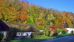 Milton Abbas, Dorset.