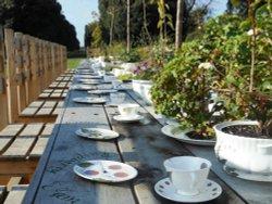 Tea Party, Kew Gardens