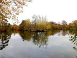 A calm autumn day on the lake at Nidd.
