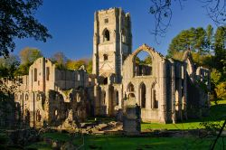 Fountains Abbey.Ripon,North Yorkshire
