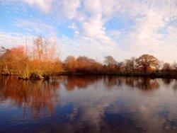 The lake at Nidd, winter.