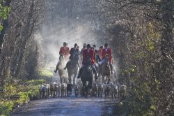 Hambledon and Hursley Hunt