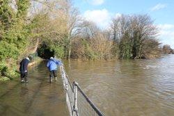 Flooded footpath near Caversham Weir