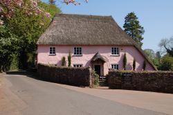 Pink thatched cottage