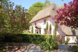Cockington village in Devon A hint of pink