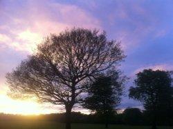 Sunset over Astley Park, Chorley