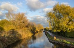 Kennet and Avon canal near Newbury Wallpaper