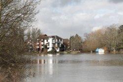 River Thames and Houses at Heron Island, Caversham