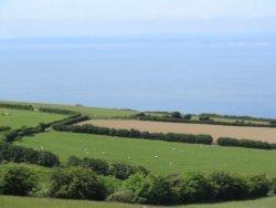 Exmoor - Moors, Sheep, and Coast - June 2003