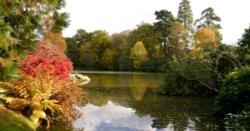 Autumn Lake in Sussex