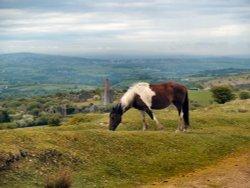 Bodmin Moor overlooking Plymouth