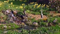 Stour Valley Spring, Shillingstone