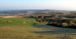Studland Nature Reserve