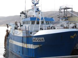 Artemis Prawn Trawler, Ullapool