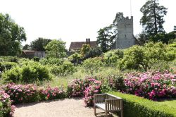 The Gardens at Greys Court