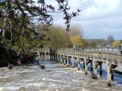 The wooden bridge, Henley Wallpaper