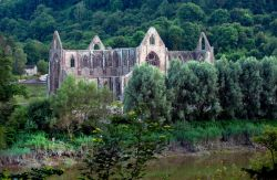 Fishing under the Abbey, Tintern.