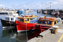 Seahouses harbour in northumberland