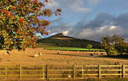 Winter Feed,Roseberry Topping Newton Under Roseberry