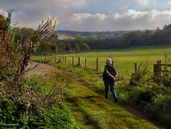Fontmell Magna, Dorset.