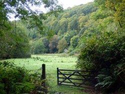 Haddon Hill