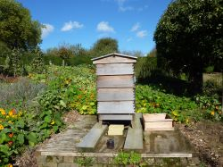 Beehive in the vegetable garden at Standen, 12th October 2012