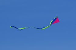 Kite on Holkham beach