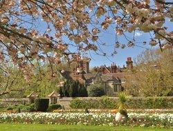 Lewes Grange Under Blossom