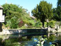 A riverside garden, Godmanchester