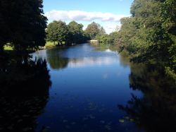The lake at Chiddingstone Castle