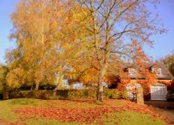 Newnham in Autumn