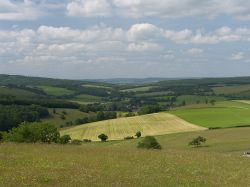 View of the South downs Wallpaper