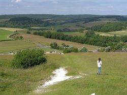 South Downs of West Sussex Wallpaper