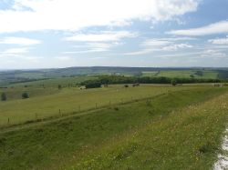 The South Downs of West Sussex Wallpaper
