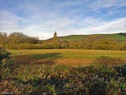 Hambledon Hill, North Dorset.