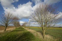 Bridleway just by Finmere, Oxfordshire