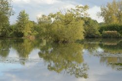Jubilee Lake near Steeple Claydon, Buckinghamshire