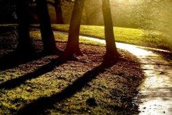 Brough Park, Leek, Staffordshire