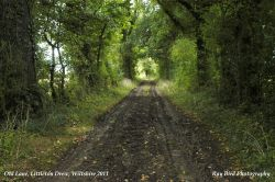 The Old Lane, Littleton Drew, Wiltshire 2011