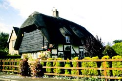 Thatched Cottage, Frampton on Severn, Gloucestershire 2001