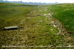 River Severn Debris, nr Frampton on Severn, Gloucestershire 1996