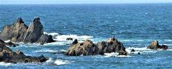 Burgh Island - Bigbury on Sea