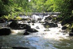 Hoghton Bottoms waterfall