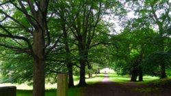 Long Pathway, Bishops Park, Bishop Auckland.