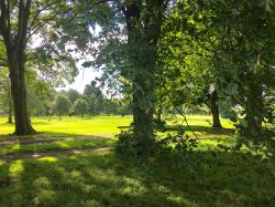 Golf Couse, Hexham, Northumberland.